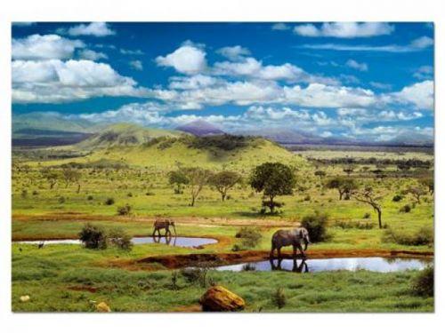 Alltoys CZ+ Puzzle Národný park Tsavo, Keňa 500 dielikov