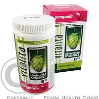 RAPETO Pangamin Vitalita + koenzym Q10 200tbl