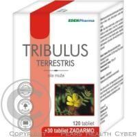 EDENPharma Tento produkt obsahuje komplex saponínov extrahovaných z rastliny Tribulus Terrestris, ktorý prirodzenou cestou zvyšuje hladinu vlastného testosterónu.