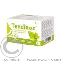 VULM TENDINOX Gingko 60mg tbl.60