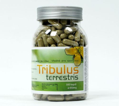 Tribulus terrestris 300 cps po 650mg 4fitness