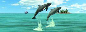 ABC Develop s.r.o. Záložka Úžaska Skákající delfíni cena od 0,00 €