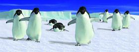 ABC Develop s.r.o. Záložka Úžaska Pochodující tučňáci cena od 0,00 €