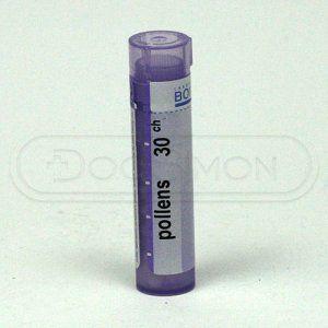 Pollens CH30 granule 4 g