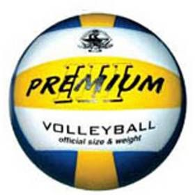 Spartan Sport Volejbalový míč