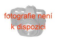 inSPORTline Ketlebel Pogumovaná činka 8 kg s chromovou rukojetí