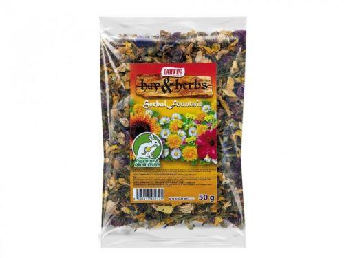 Darwins Hay & Herbs Herbal Fountain 50 g